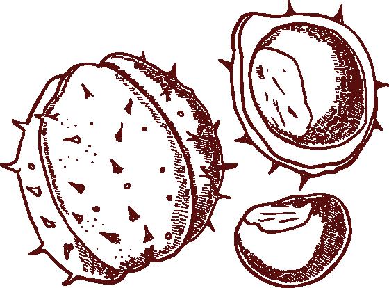castagne-heart